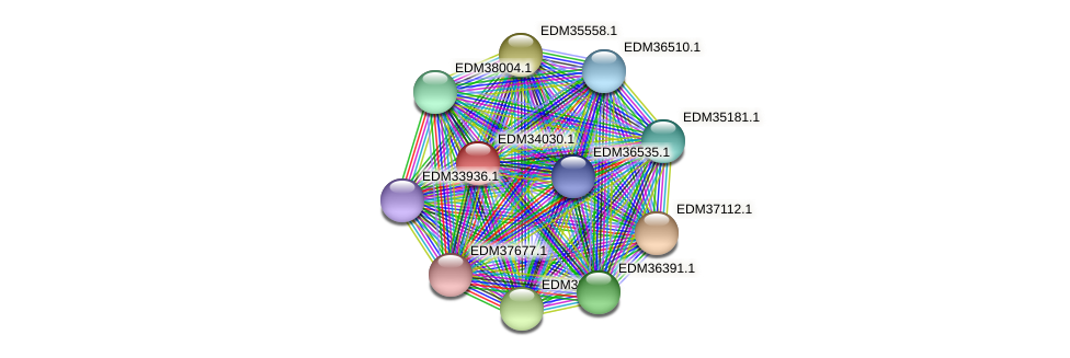 PBAL39_17204 protein (Pedobacter sp. BAL39) - STRING interaction network