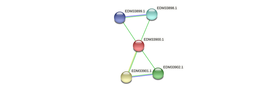 PBAL39_17594 protein (Pedobacter sp. BAL39) - STRING interaction network