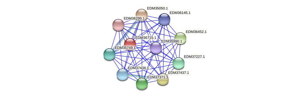 PBAL39_17614 protein (Pedobacter sp. BAL39) - STRING interaction network