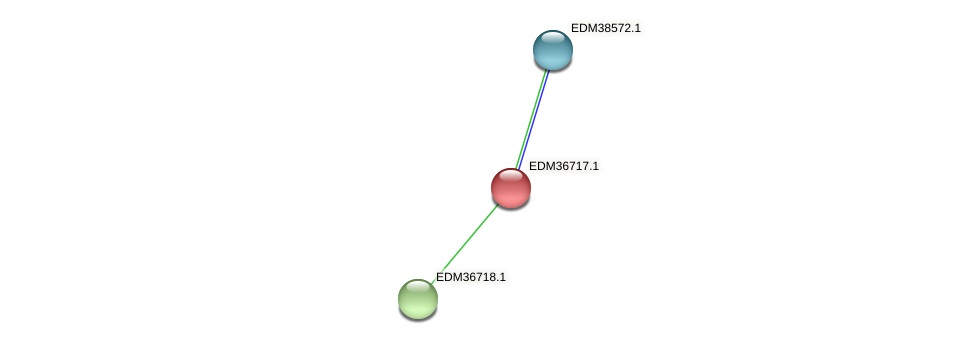 PBAL39_17624 protein (Pedobacter sp. BAL39) - STRING interaction network