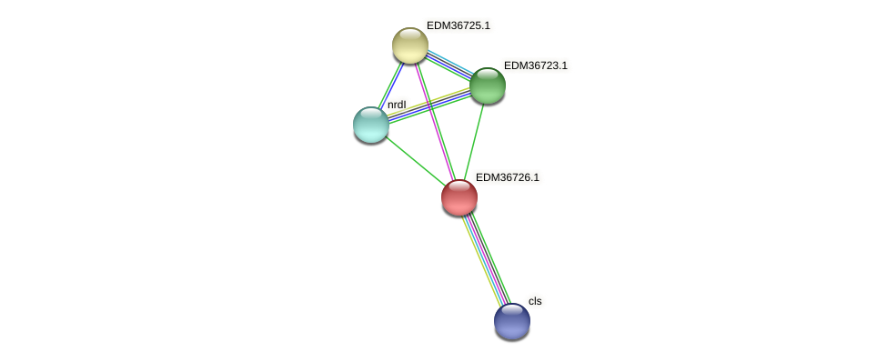 PBAL39_17669 protein (Pedobacter sp. BAL39) - STRING interaction network