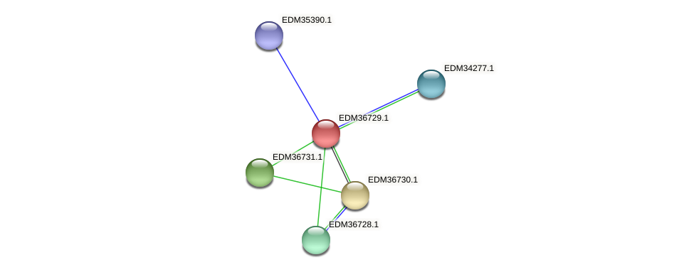 PBAL39_17684 protein (Pedobacter sp. BAL39) - STRING interaction network