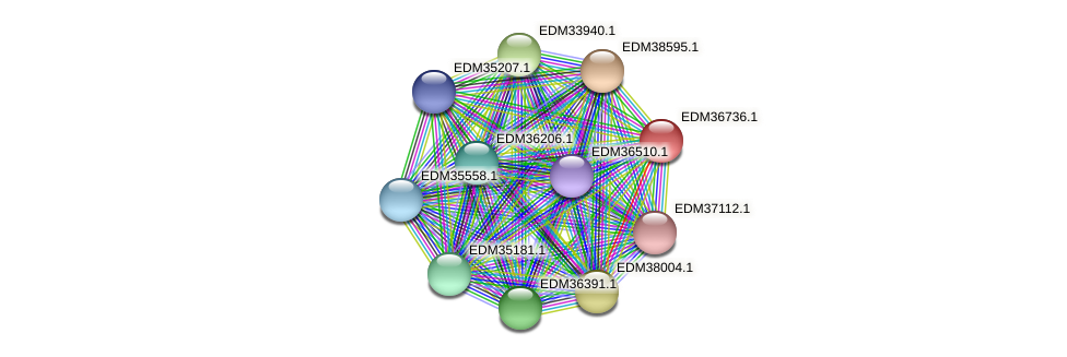 PBAL39_17719 protein (Pedobacter sp. BAL39) - STRING interaction network