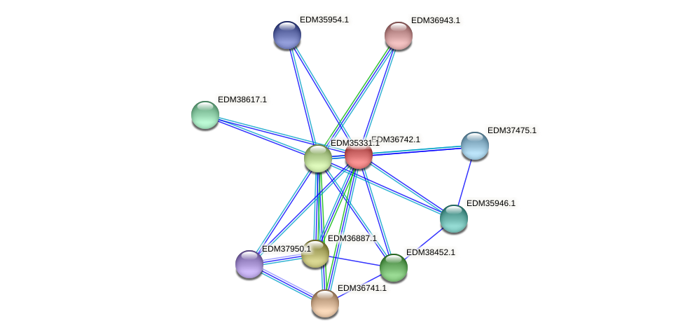 PBAL39_17749 protein (Pedobacter sp. BAL39) - STRING interaction network