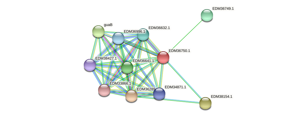 PBAL39_17789 protein (Pedobacter sp. BAL39) - STRING interaction network
