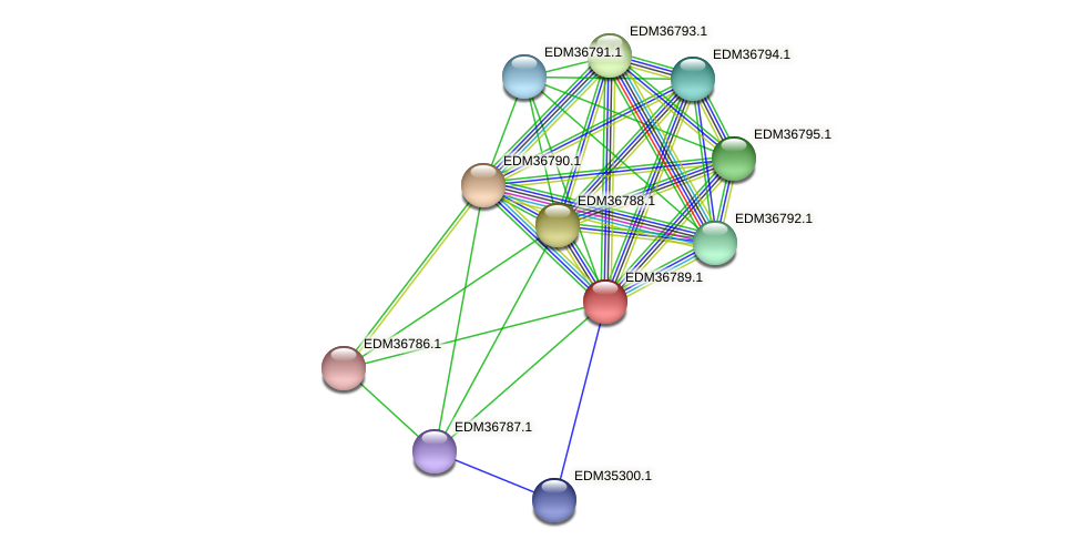 PBAL39_17984 protein (Pedobacter sp. BAL39) - STRING interaction network