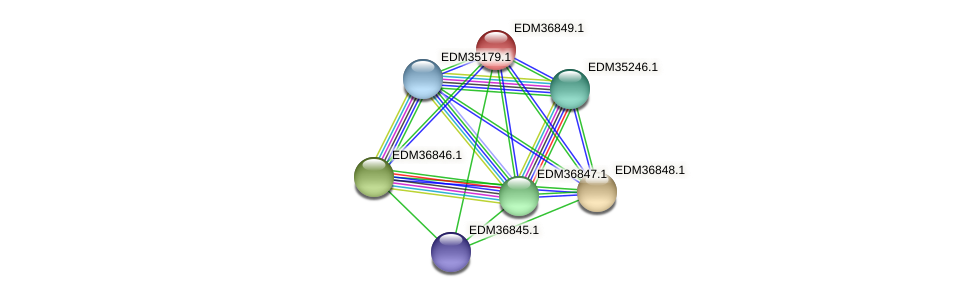 PBAL39_18284 protein (Pedobacter sp. BAL39) - STRING interaction network