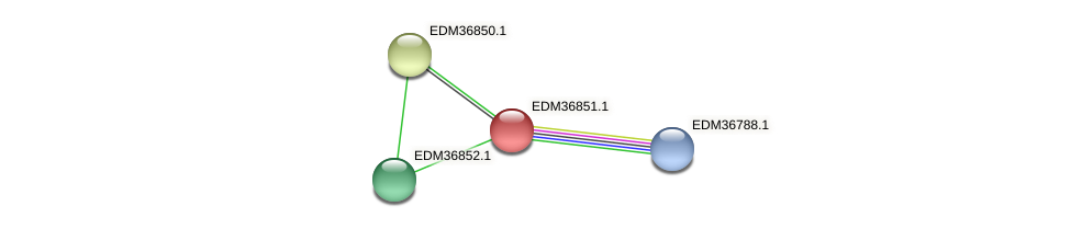 PBAL39_18294 protein (Pedobacter sp. BAL39) - STRING interaction network