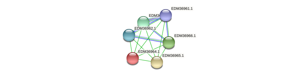 PBAL39_18859 protein (Pedobacter sp. BAL39) - STRING interaction network