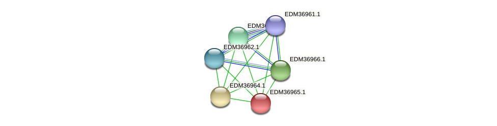 PBAL39_18864 protein (Pedobacter sp. BAL39) - STRING interaction network