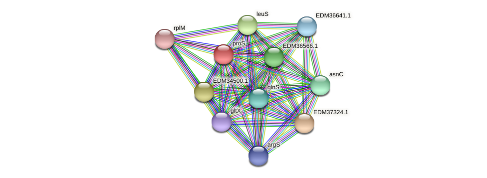 proS protein (Pedobacter sp. BAL39) - STRING interaction network