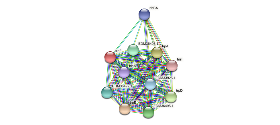 trpF protein (Pedobacter sp. BAL39) - STRING interaction network