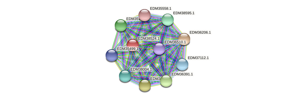 PBAL39_20665 protein (Pedobacter sp. BAL39) - STRING interaction network
