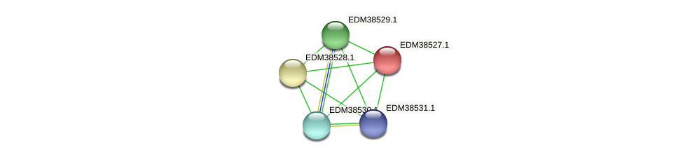 PBAL39_20680 protein (Pedobacter sp. BAL39) - STRING interaction network