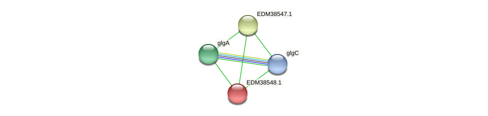 PBAL39_20785 protein (Pedobacter sp. BAL39) - STRING interaction network