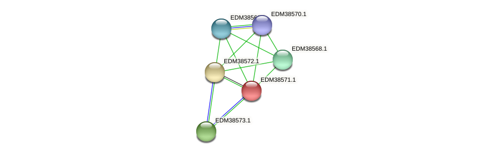 PBAL39_20900 protein (Pedobacter sp. BAL39) - STRING interaction network