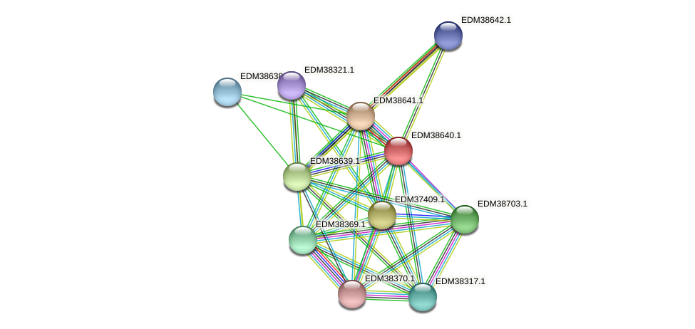 PBAL39_21245 protein (Pedobacter sp. BAL39) - STRING interaction network