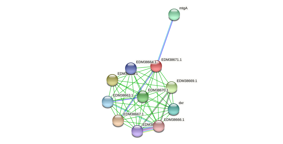 PBAL39_21400 protein (Pedobacter sp. BAL39) - STRING interaction network