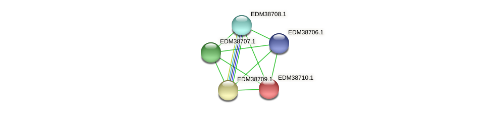 PBAL39_21595 protein (Pedobacter sp. BAL39) - STRING interaction network
