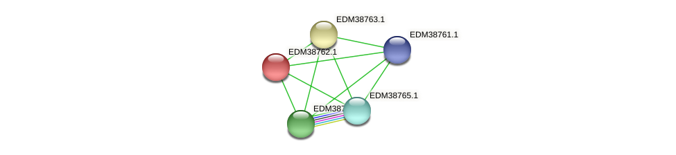 EDM38762.1 protein (Pedobacter sp. BAL39) - STRING interaction network