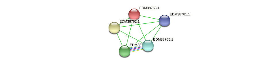 PBAL39_21860 protein (Pedobacter sp. BAL39) - STRING interaction network