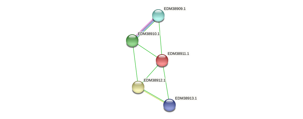 PBAL39_22600 protein (Pedobacter sp. BAL39) - STRING interaction network
