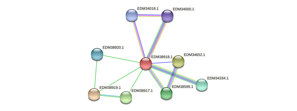 PBAL39_22635 protein (Pedobacter sp. BAL39) - STRING interaction network