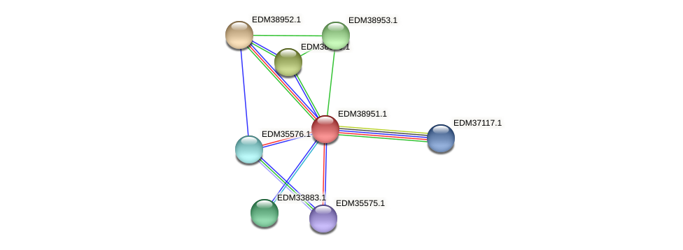 PBAL39_22800 protein (Pedobacter sp. BAL39) - STRING interaction network