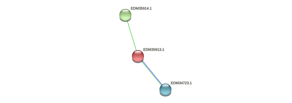 PBAL39_22937 protein (Pedobacter sp. BAL39) - STRING interaction network