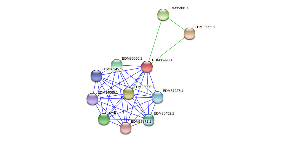 PBAL39_23322 protein (Pedobacter sp. BAL39) - STRING interaction network