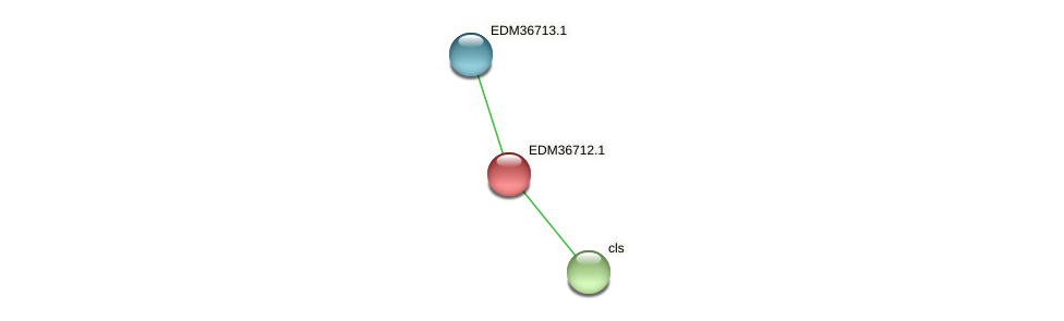 PBAL39_25630 protein (Pedobacter sp. BAL39) - STRING interaction network