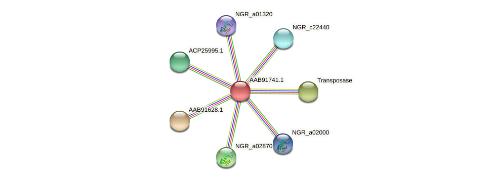 AAB91741.1 protein (Sinorhizobium fredii NGR234) - STRING interaction network
