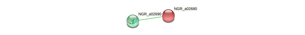 NGR_a02680 protein (Sinorhizobium fredii NGR234) - STRING interaction network
