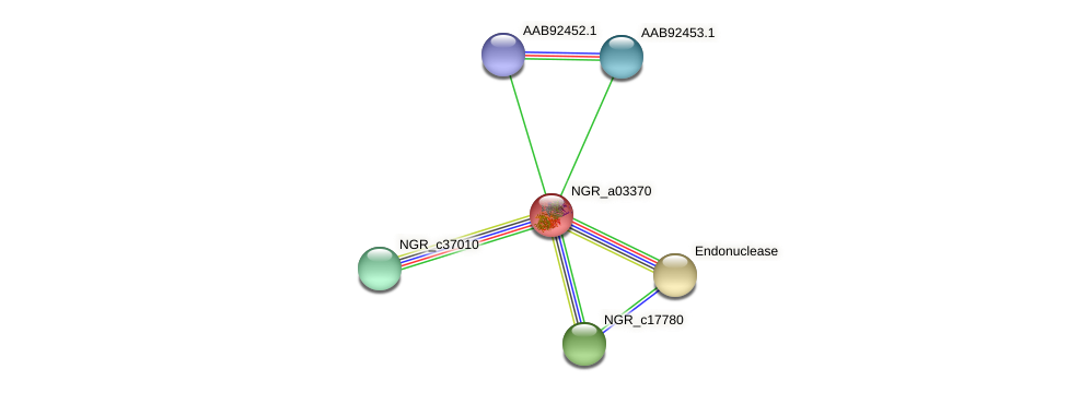 NGR_a03370 protein (Sinorhizobium fredii NGR234) - STRING interaction network