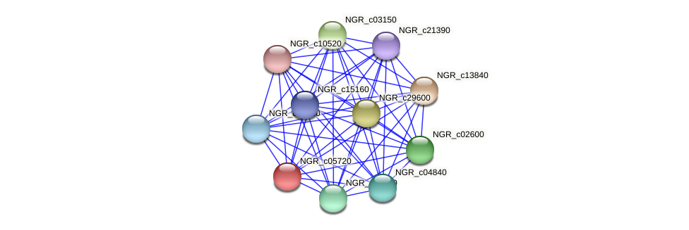 NGR_c05720 protein (Sinorhizobium fredii NGR234) - STRING interaction network
