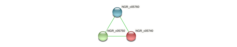 NGR_c05740 protein (Sinorhizobium fredii NGR234) - STRING interaction network