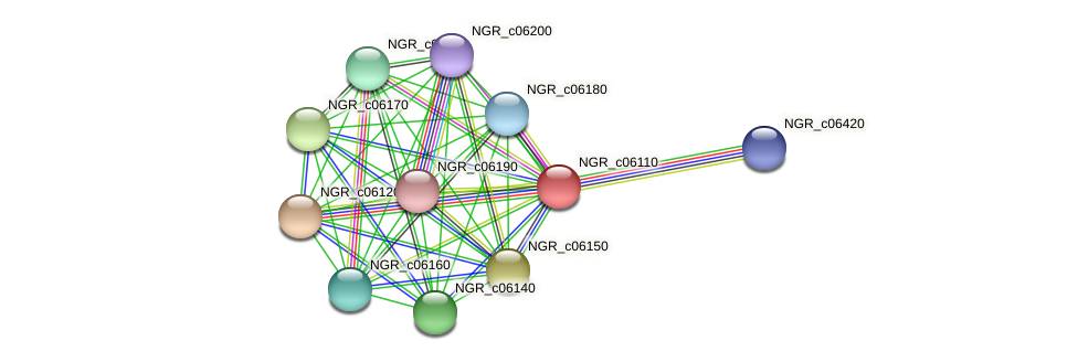 NGR_c06110 protein (Sinorhizobium fredii NGR234) - STRING interaction network