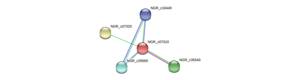 NGR_c07310 protein (Sinorhizobium fredii NGR234) - STRING interaction network