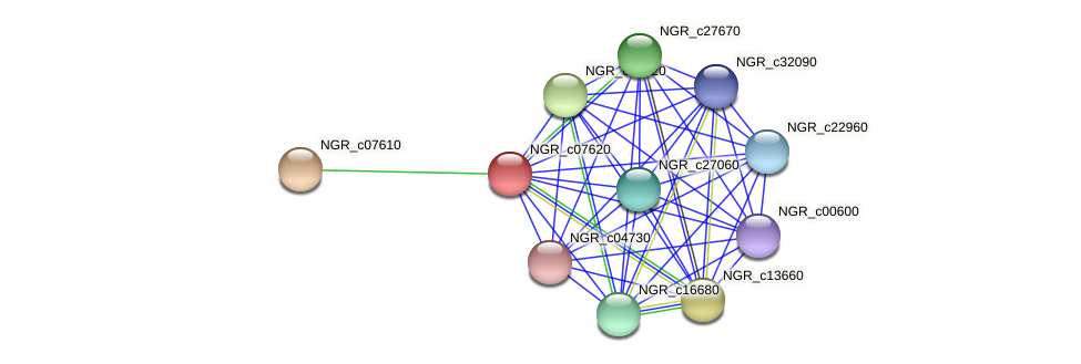 NGR_c07620 protein (Sinorhizobium fredii NGR234) - STRING interaction network