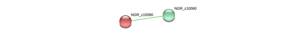 NGR_c10080 protein (Sinorhizobium fredii NGR234) - STRING interaction network
