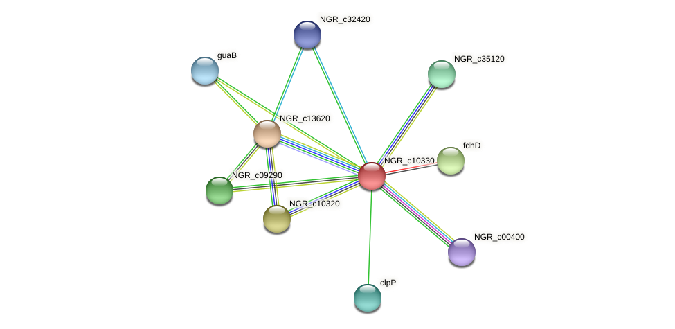 NGR_c10330 protein (Sinorhizobium fredii NGR234) - STRING interaction network