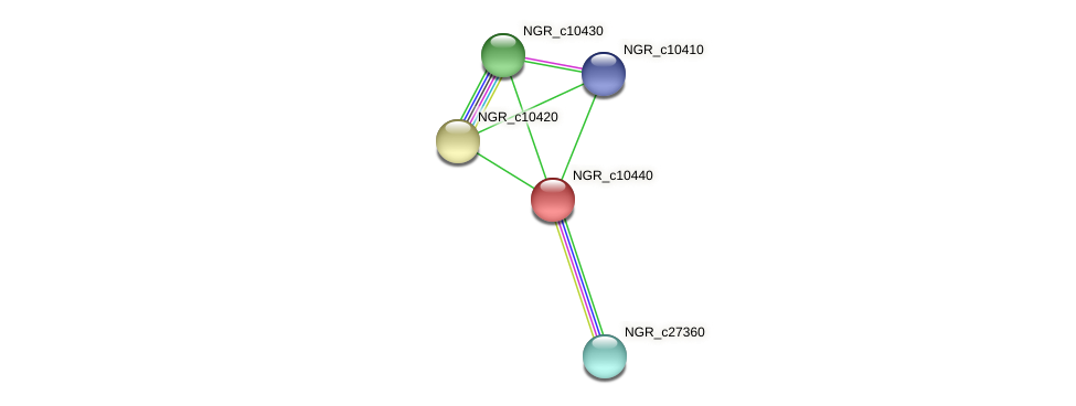NGR_c10440 protein (Sinorhizobium fredii NGR234) - STRING interaction network