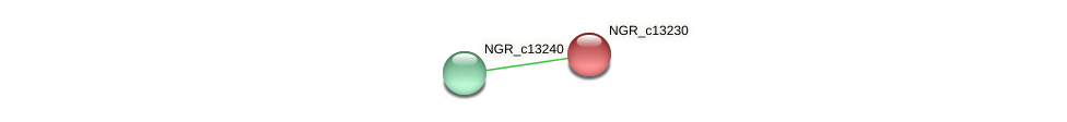 NGR_c13230 protein (Sinorhizobium fredii NGR234) - STRING interaction network