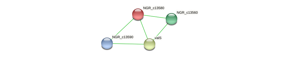 NGR_c13580 protein (Sinorhizobium fredii NGR234) - STRING interaction network