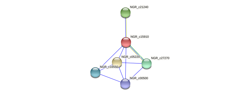 NGR_c15910 protein (Sinorhizobium fredii NGR234) - STRING interaction network