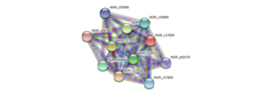 NGR_c17830 protein (Sinorhizobium fredii NGR234) - STRING interaction network