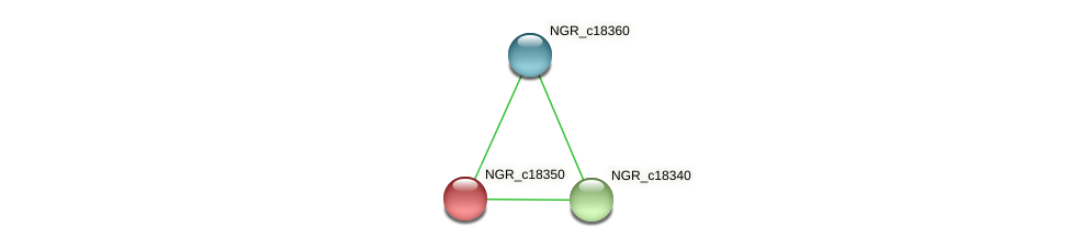 NGR_c18350 protein (Sinorhizobium fredii NGR234) - STRING interaction network