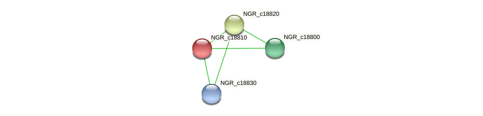 NGR_c18810 protein (Sinorhizobium fredii NGR234) - STRING interaction network