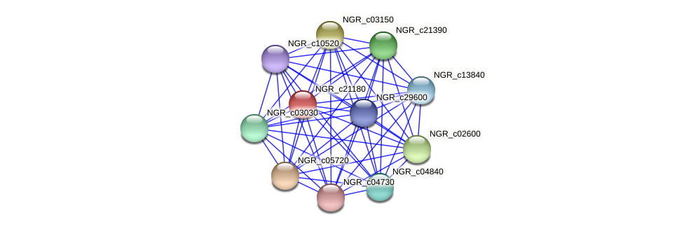 NGR_c21180 protein (Sinorhizobium fredii NGR234) - STRING interaction network