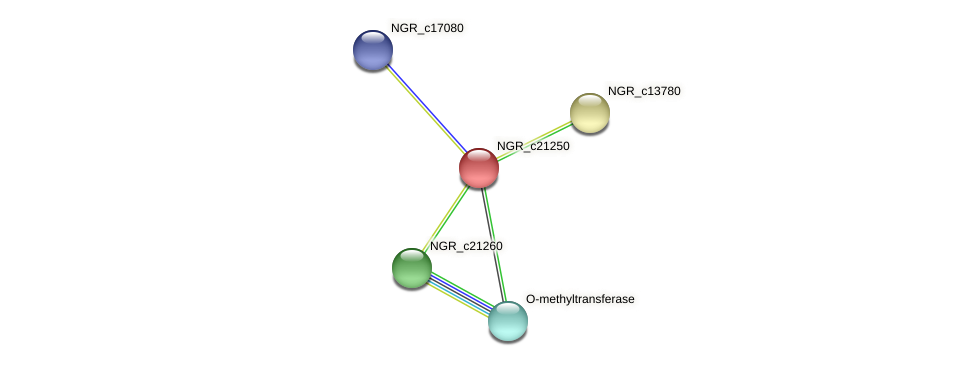 NGR_c21250 protein (Sinorhizobium fredii NGR234) - STRING interaction network